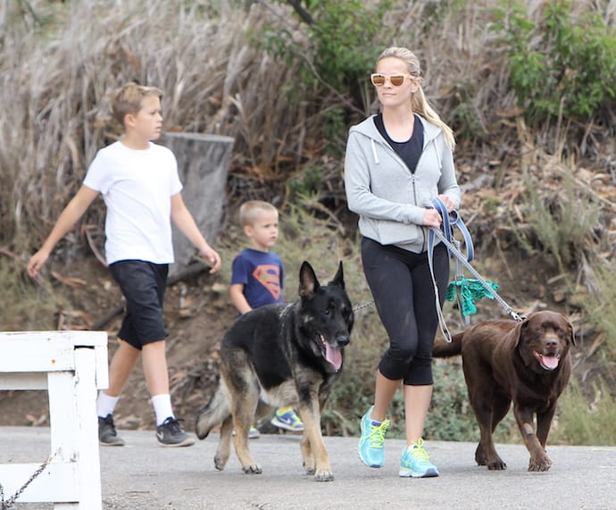 Reese Witherspoon hiking with her sons and dogs