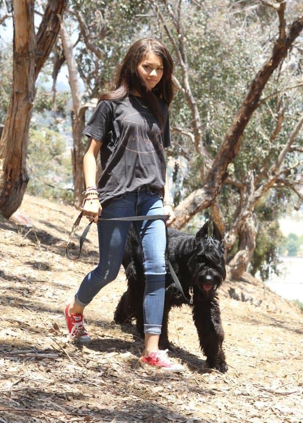 Zendaya hiking with the dog