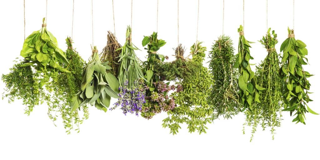 Herbal Remedies For Home
