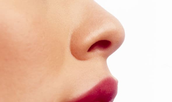 nose of a woman