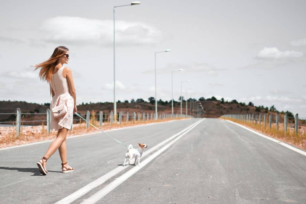 a woman taking a walk with her dog