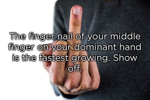 fingernail of the middle finger