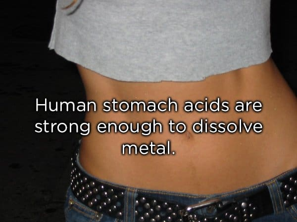 the stomach of a person