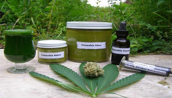 cannabis plant and cannabis oils
