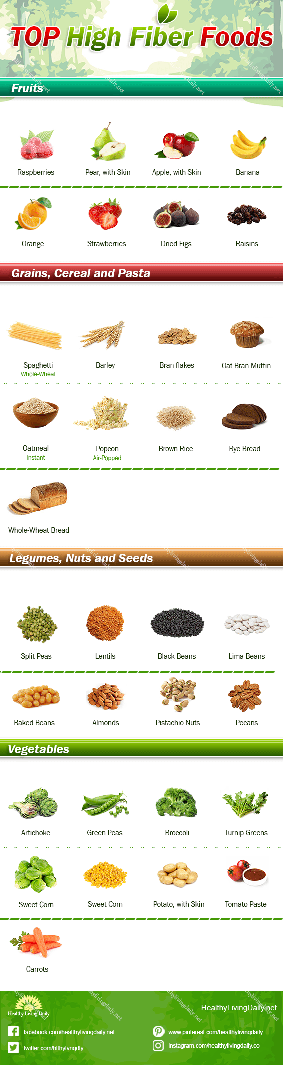Infographic image for top high fiber foods