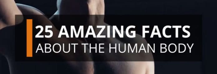 25 Amazing Facts About The Human Body