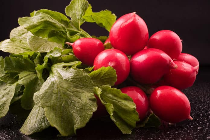 Radishes have Less Known Benefits and How to Prepare